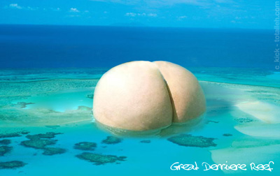 The Great Derriere Reef